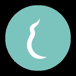Dubbel Zen_iconen-maand 5